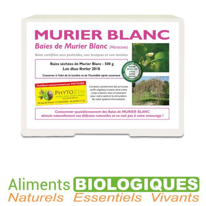 baies-de-murier-blanc-sechees-phytozen-naturabaies