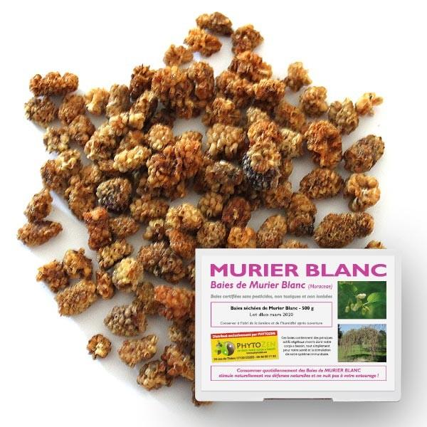 murier-blanc-500g