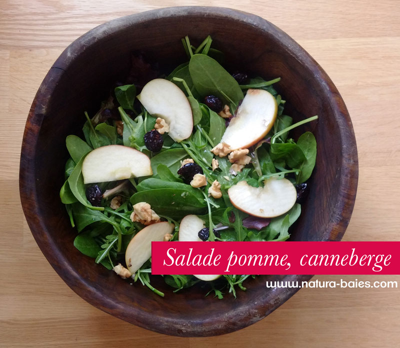 salade-pomme-canneberge2